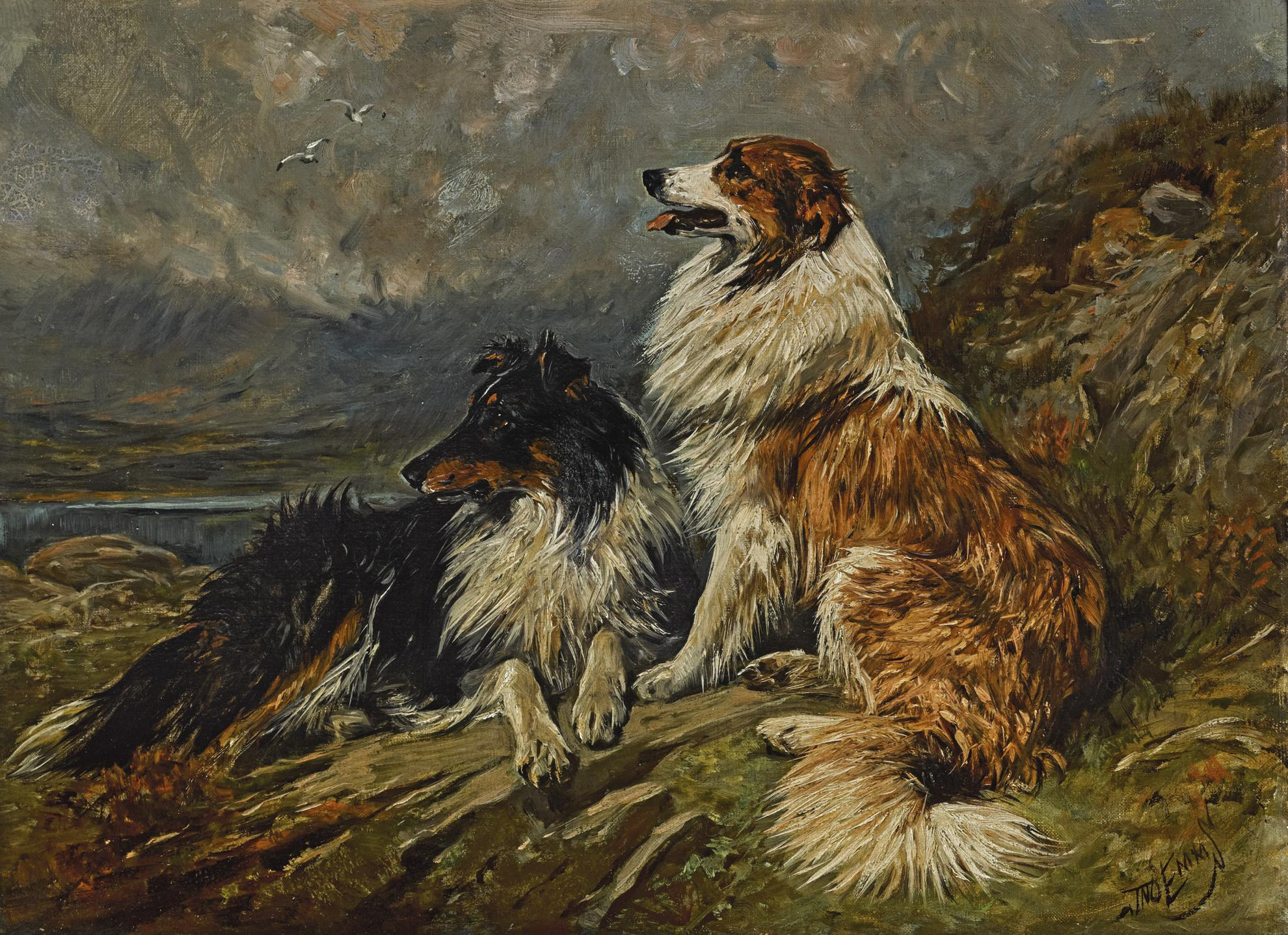 John Emms - Collies On The Moor-