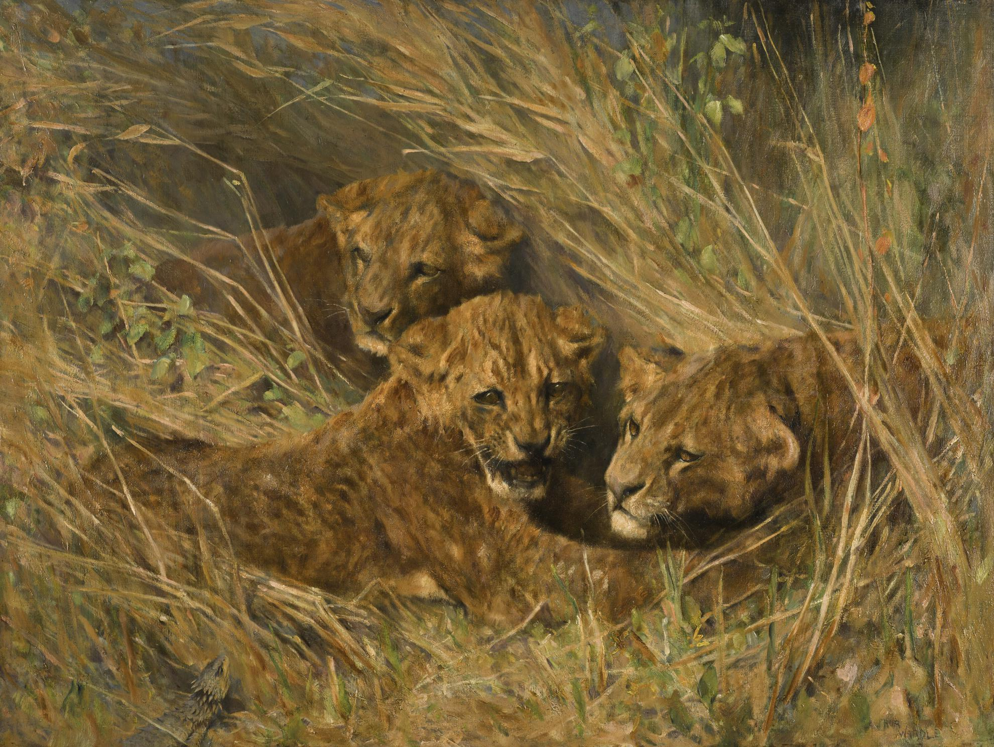 Arthur Wardle R.I. R.B.C. - Lion Cubs-