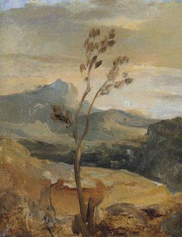 Theodore Rousseau-Paysage Dauvergne (?)