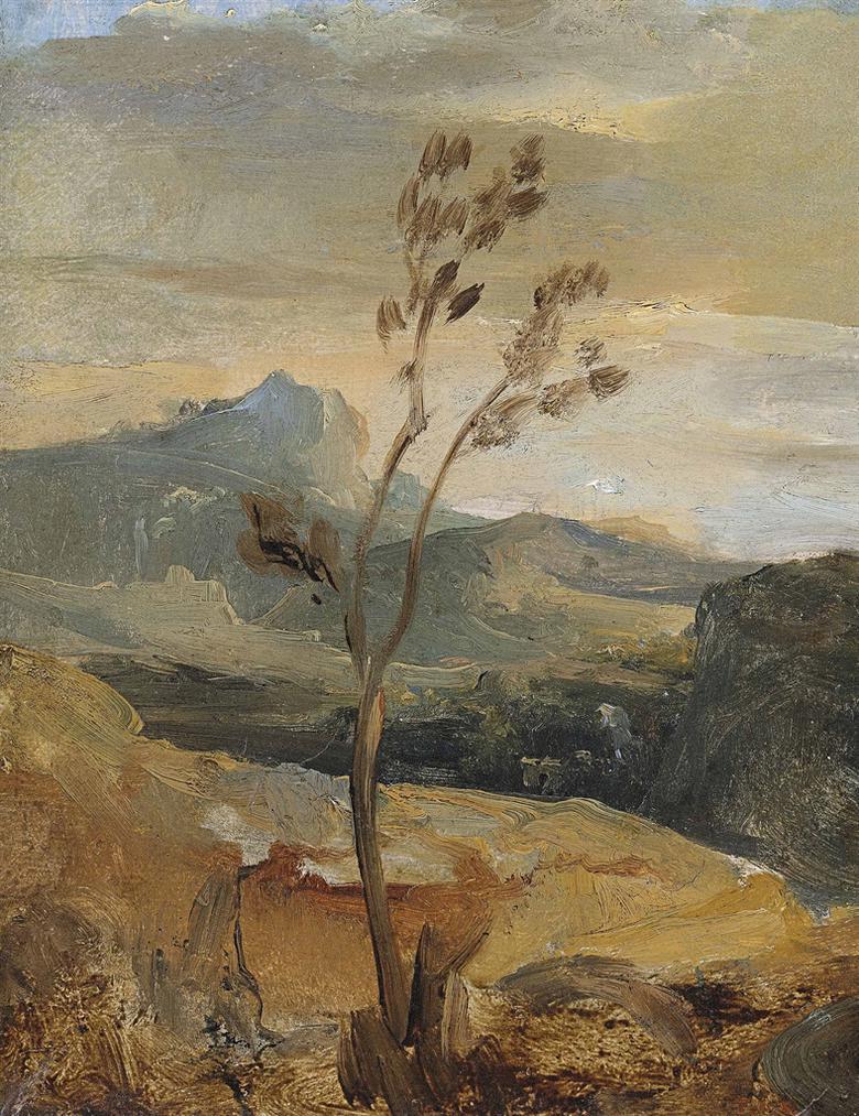 Theodore Rousseau-Paysage Dauvergne (?)-
