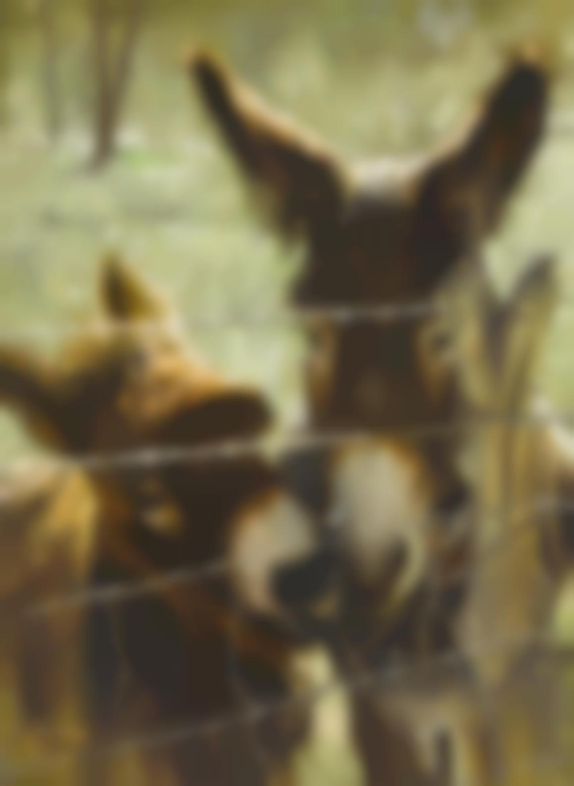 Clark Hulings - Nuzzling Donkeys-1973