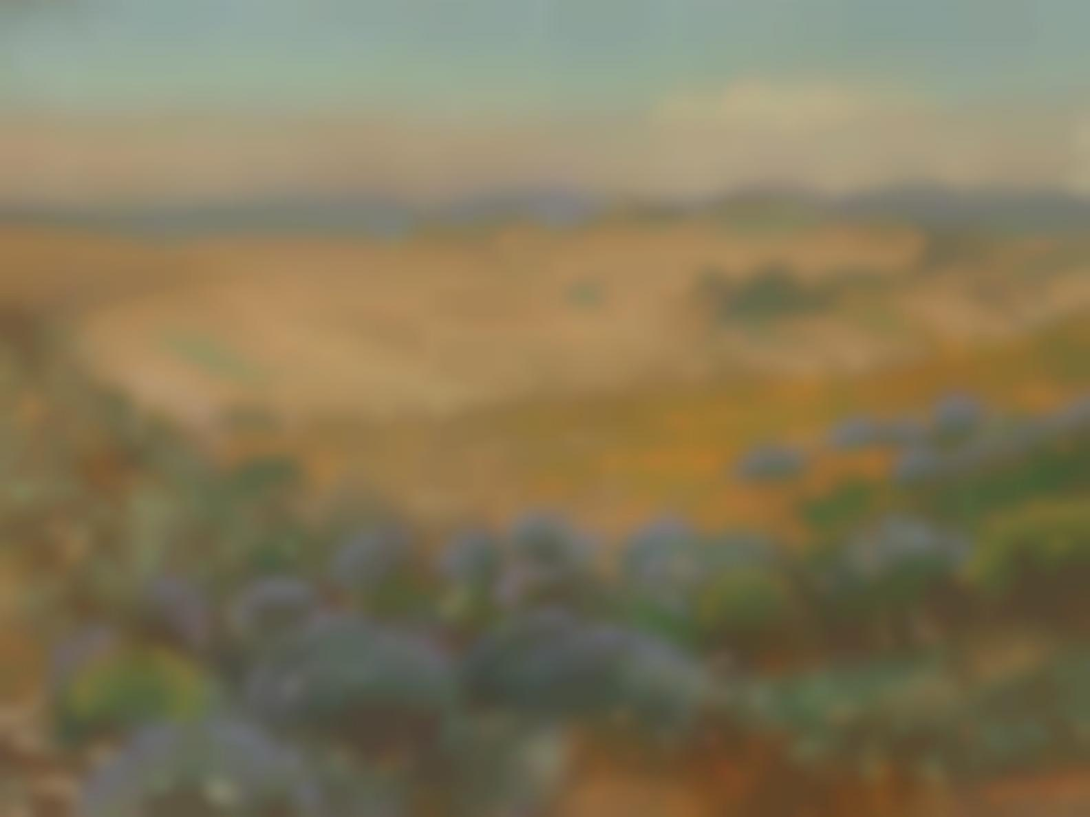 Theodore Wores - The Wild Flowers Of The Sand Dunes, San Francisco-