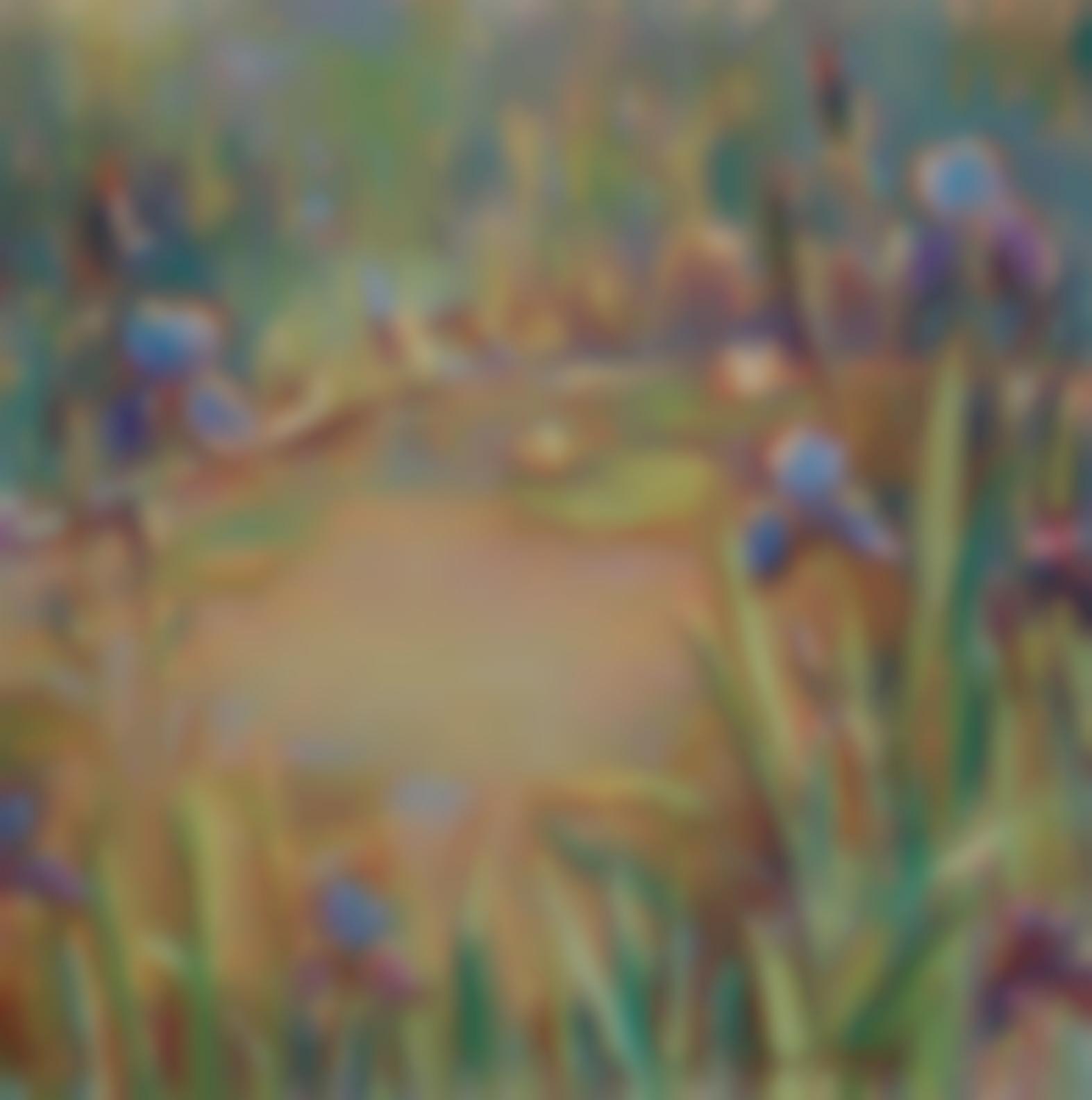 Donna Schuster - Irises-