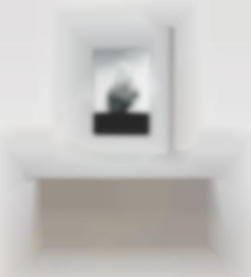 John Gerrard-Smoke Tree IV-2006