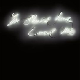 Tracey Emin-You Should Have Loved Me-2008