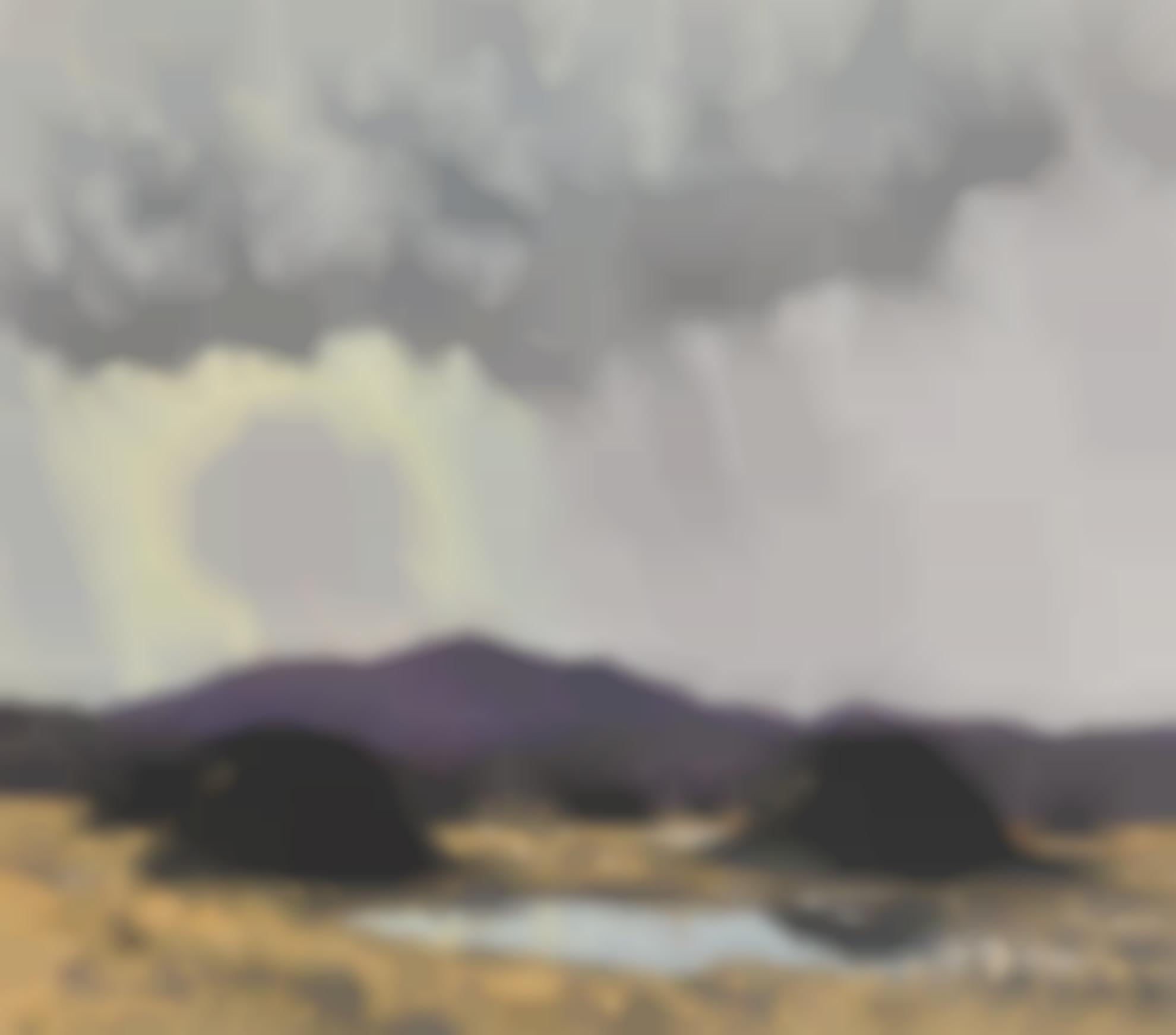 Paul Henry R.U.A. - The Storm-