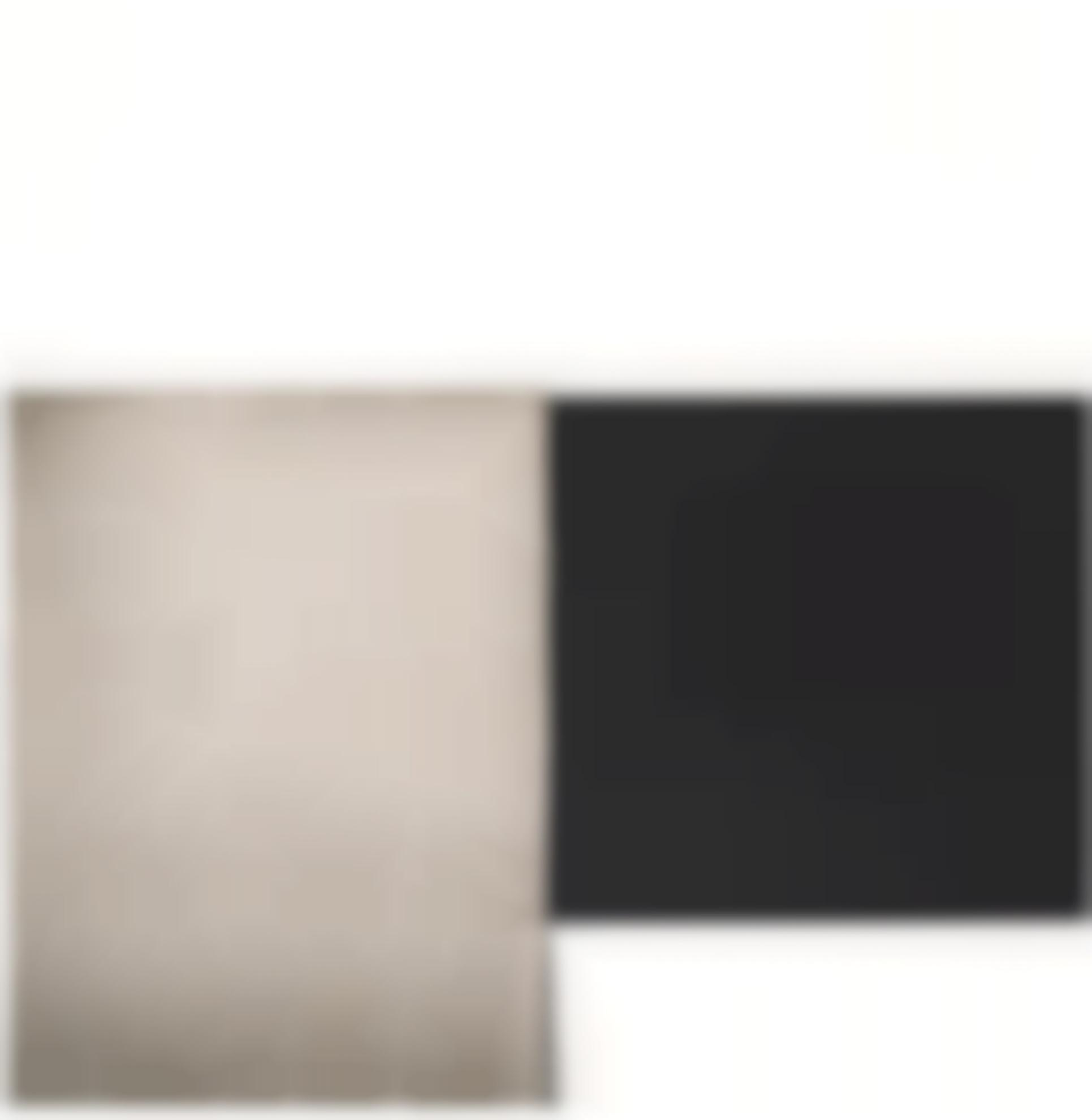 Callum Innes-Exposed Painting Ivory Black Yellow Oxide-2001