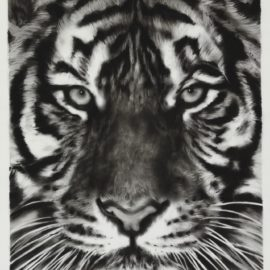 Robert Longo-Tiger Head 5B-2010