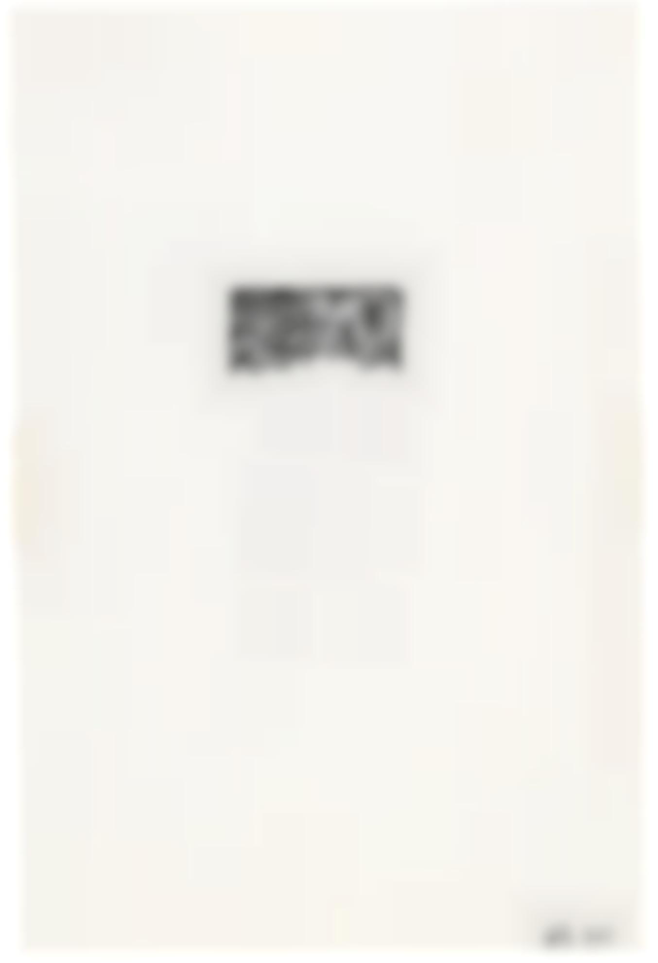Brice Marden-Suicide Note-1972