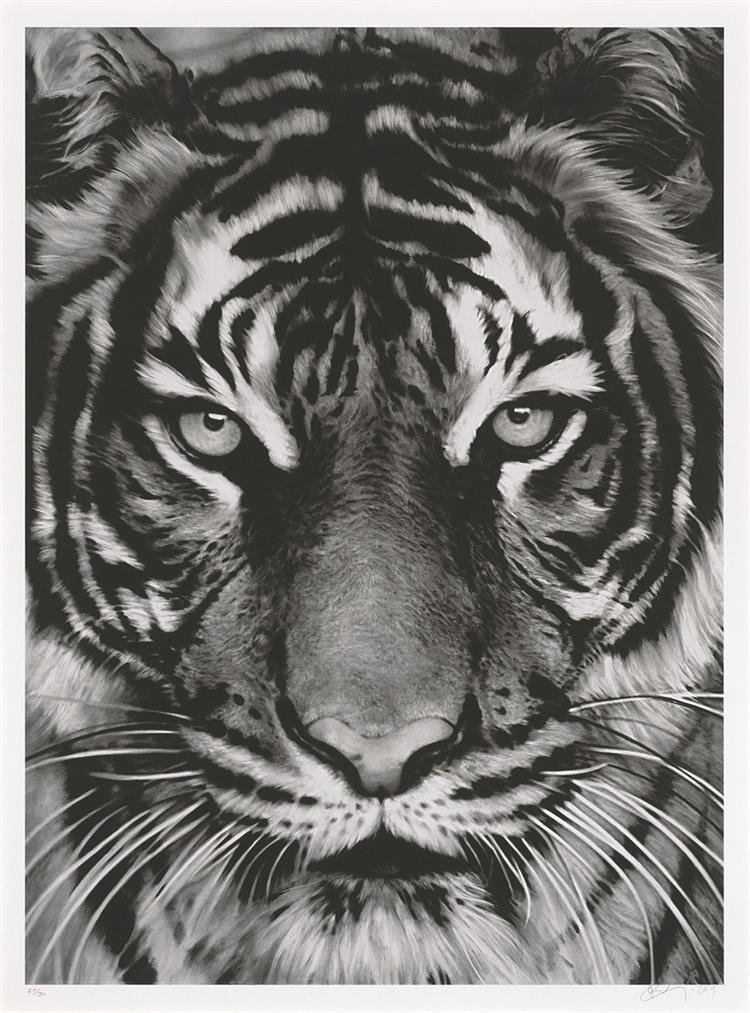 Robert Longo-Tiger-2011