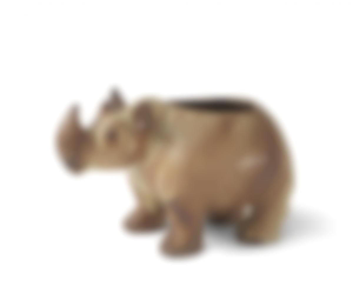 Coco - A Rhinoceros Vessel-2017