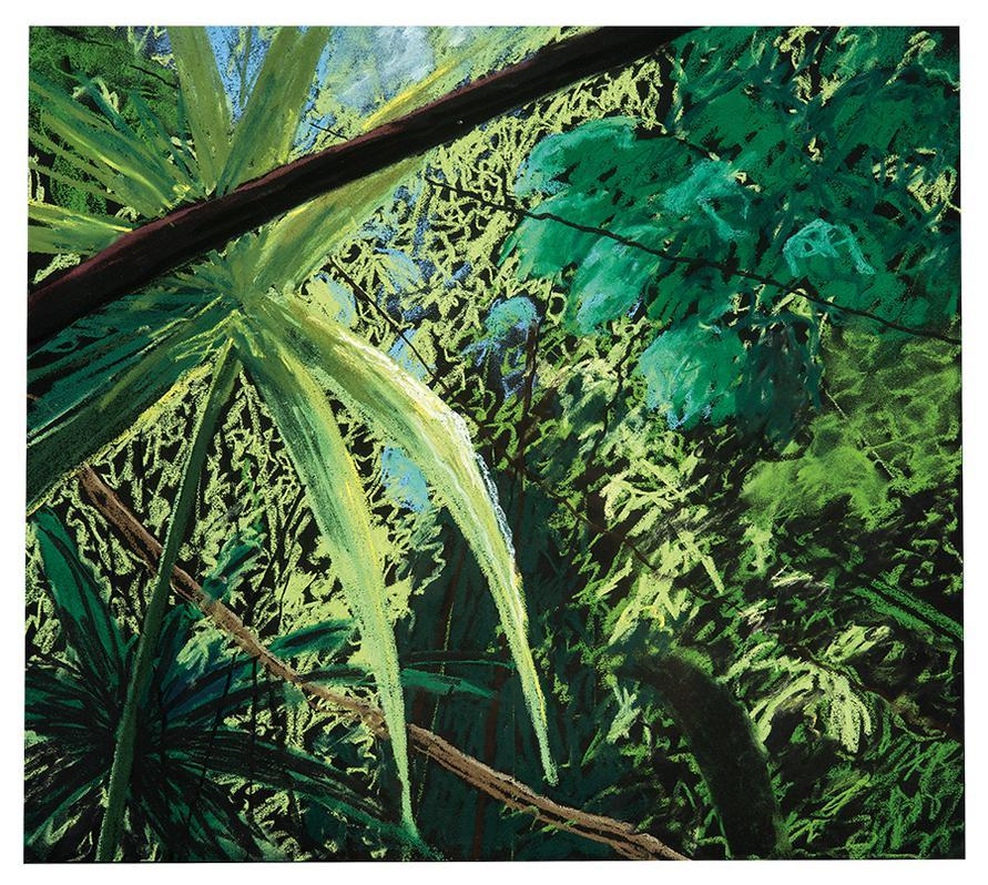 Peter Alexander-Coba Ivi; Hermosa Flats II (2)-1988