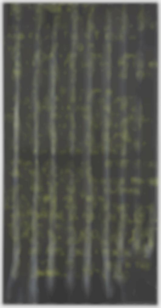 Gary Simmons-Baldhead With Noose Curtain-1993