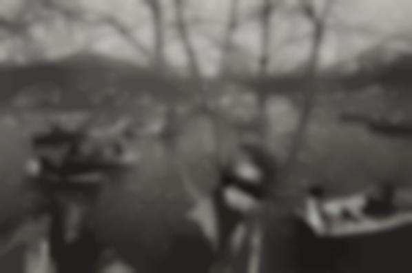 Lee Friedlander-Nyc-1971