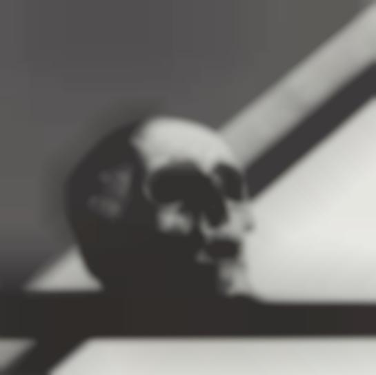 Robert Mapplethorpe-Skull-1988