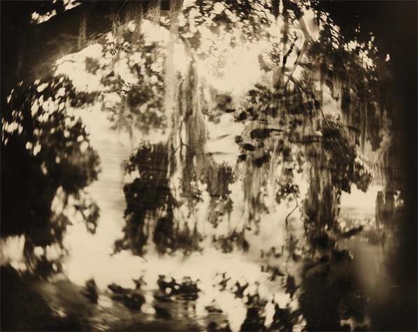 Sally Mann-Untitled From Deep South-1998