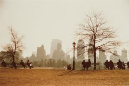 Ruth Orkin-Looking Across Sheep Meadow Toward Central Park South, New York City-1958