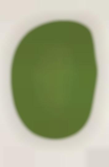 Ellsworth Kelly-Green (Vert), From Suite Of Twenty-Seven Color Lithographs-1965