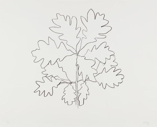 Ellsworth Kelly-Oak Vi, From Series Of Oak Leaves-1992
