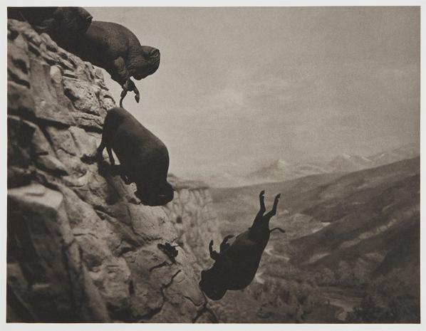 David Wojnarowicz-Untitled (Buffaloes)-1994