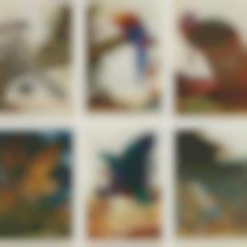 Walton Ford-Swadeshi-Cide, 1998; La Historia Me Absolvera, 1999; Benjamins Emblem, 2000; Tale Of Johnny Nutkin, 2001; Compromised, 2003; And Visitation, 2004-2004