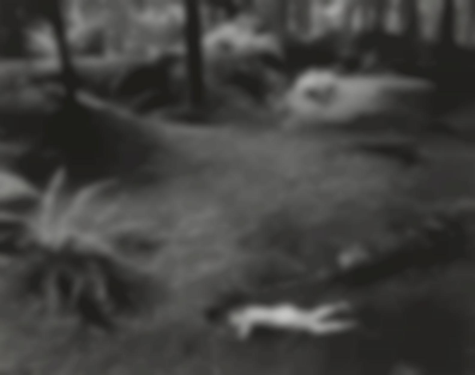 Wynn Bullock-Child In Forest-1951