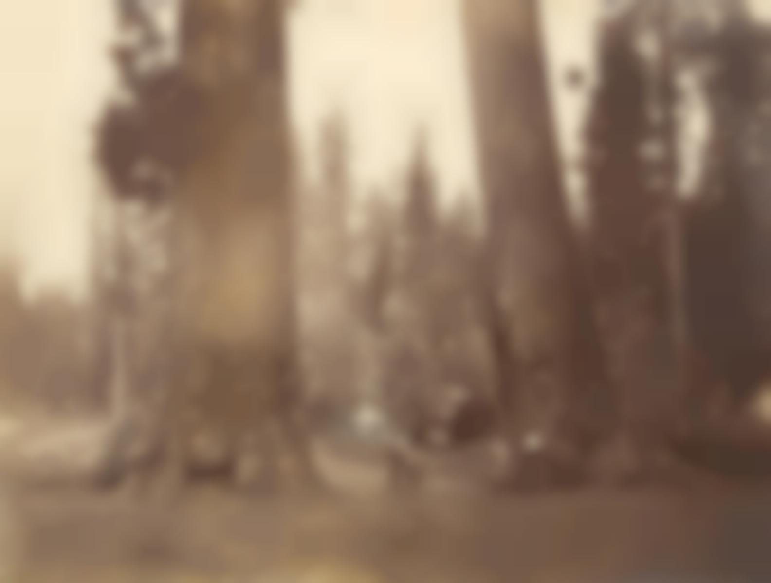 Carleton E. Watkins-Section Of The Sentinels With Pavilion Built Over The Stump Of The Big Tree, Calaveras Grove, 1878-81-