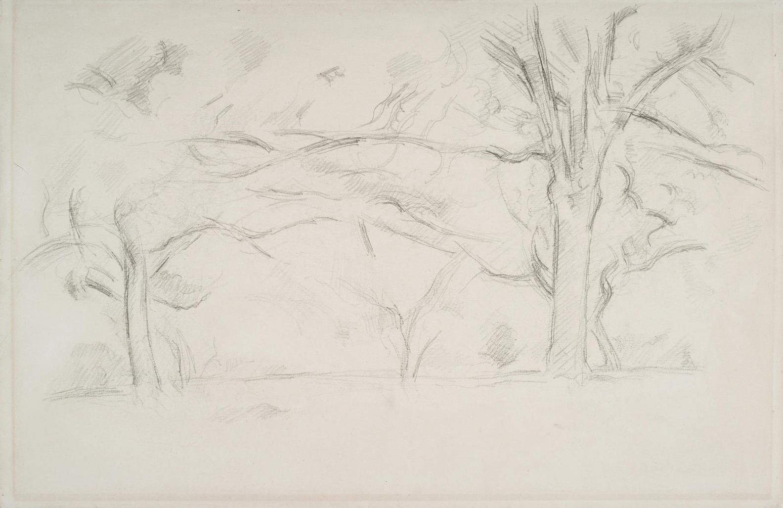 Paul Cezanne-Arbres Au Jas De Bouffan-1895