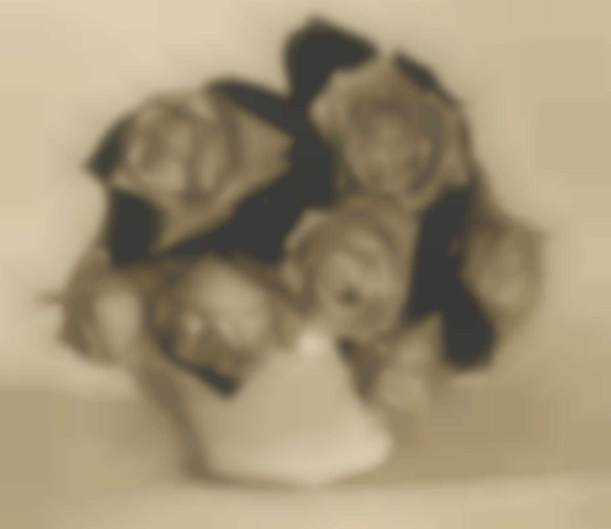 Heinrich Kuhn-Untitled (Vase Of Roses)-1915