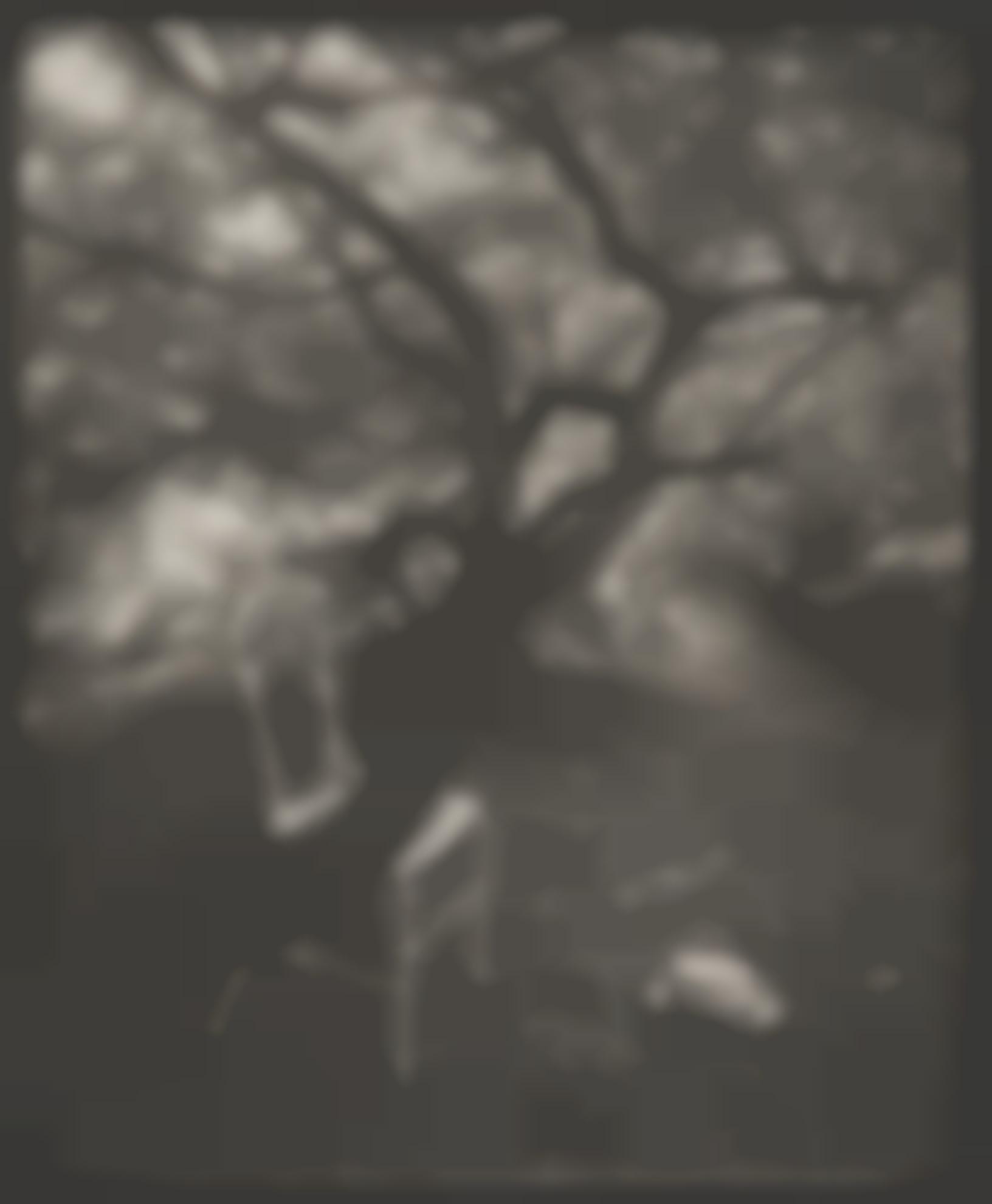 Josef Sudek-Siesta (A Walk In The Magic Garden)-1954