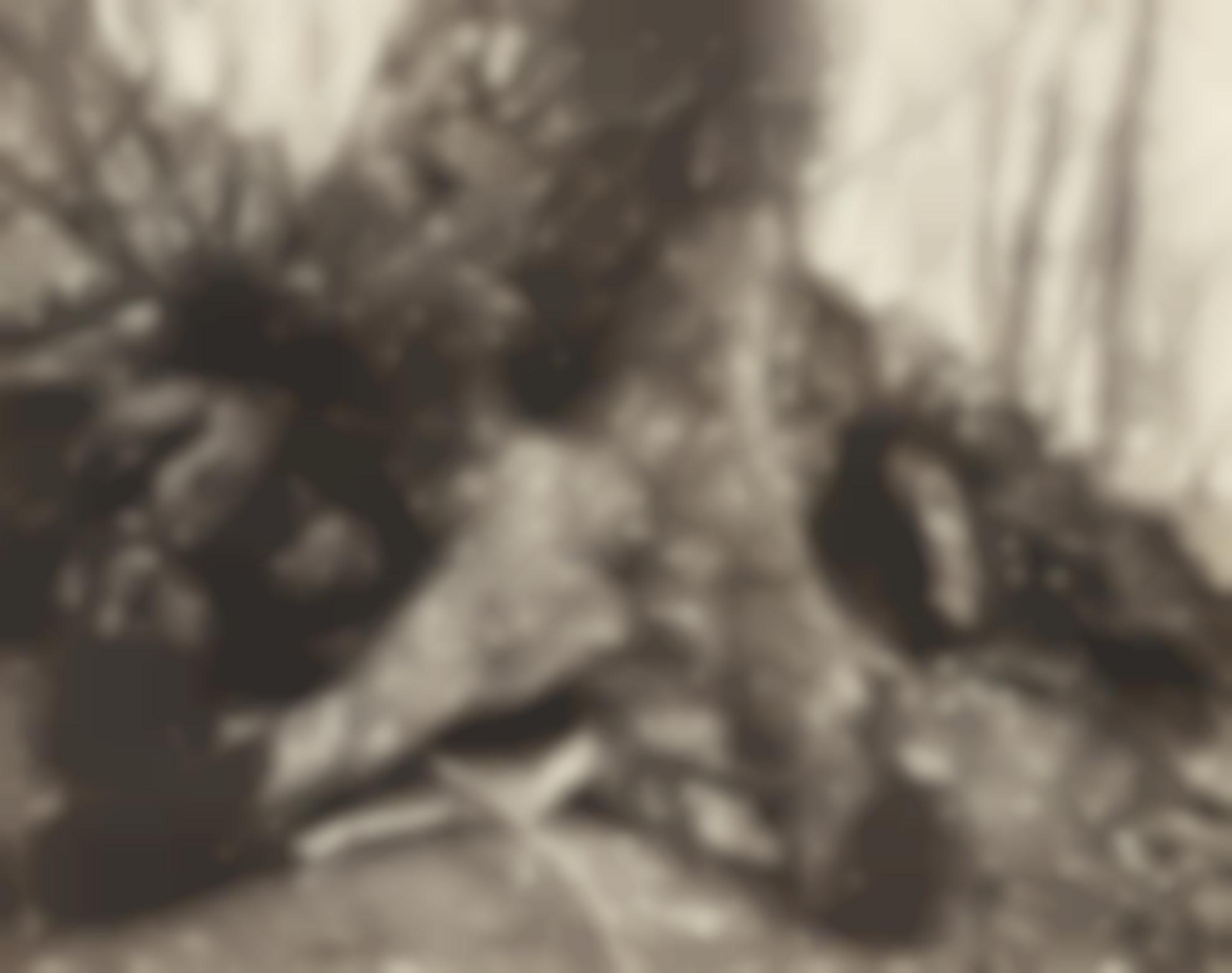 Eugene Atget-St. Cloud (Arbre)-1924