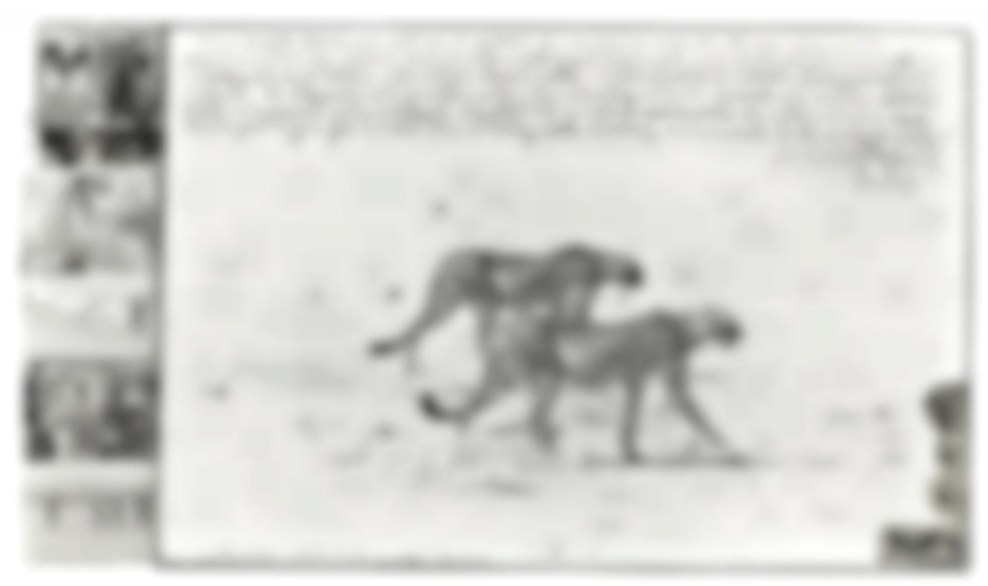 Peter Beard-Hunting Cheetahs On The Taru Desert-1960