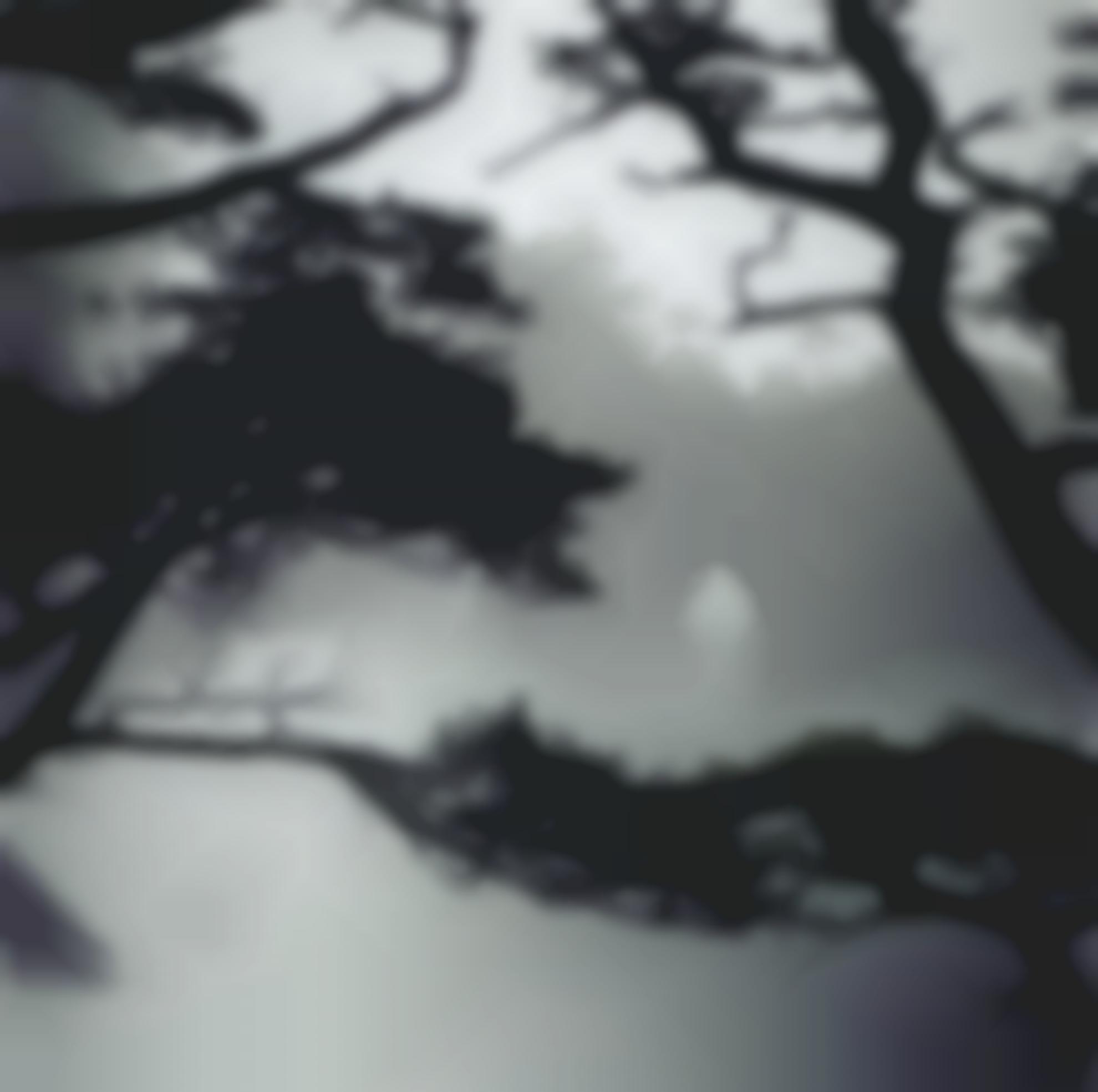 Darren Almond-Fullmoon Sesshu II-2006