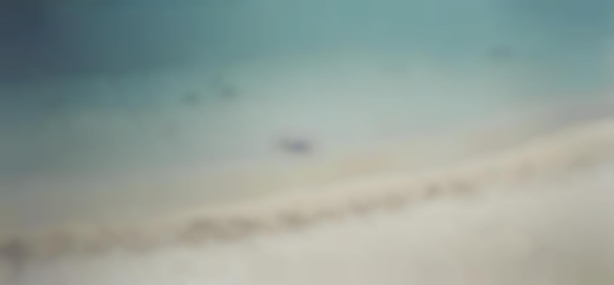 Richard Misrach-Untitled #892-03 (From On The Beach)-2003