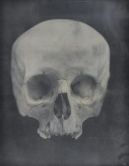 Adam Fuss-Untitled (Skull)-2005