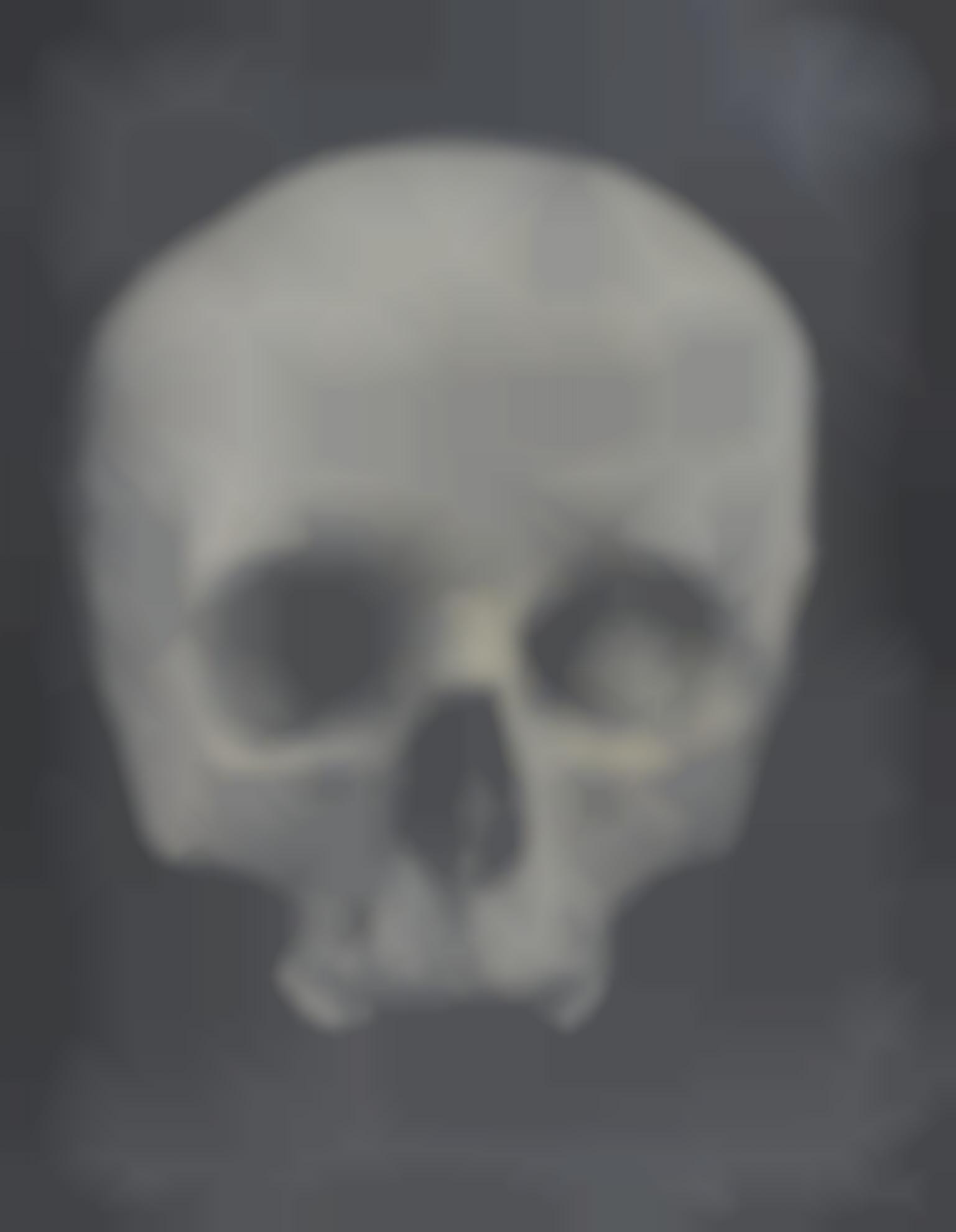 Adam Fuss-Untitled (Skull)-2005