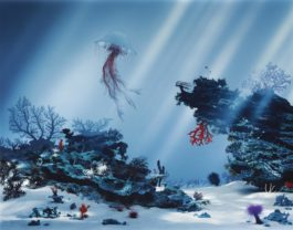 Didier Massard-The Corals-2004
