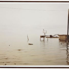 Richard Misrach-Egret And Heron, Salton Sea-1985