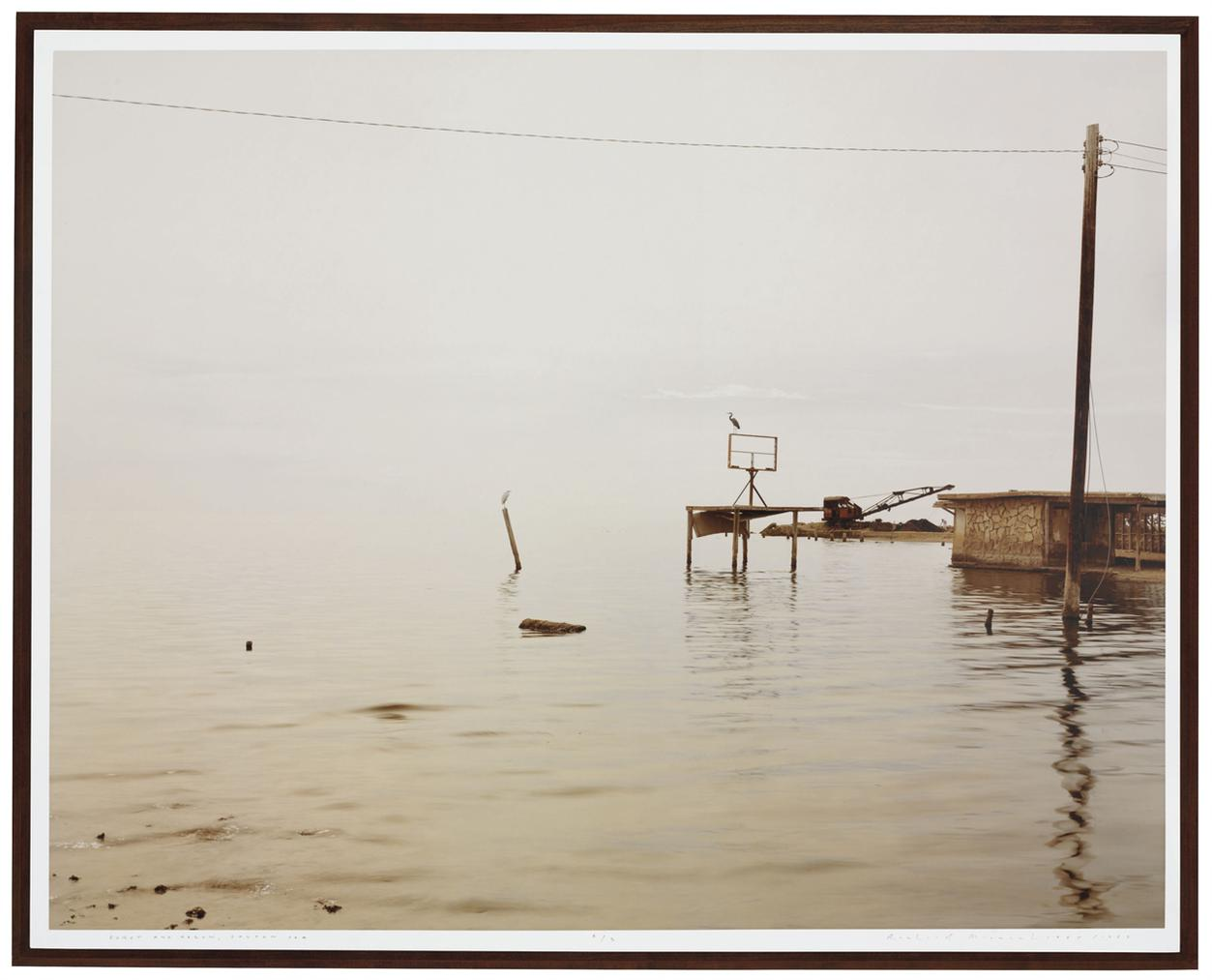 Richard Misrach-Egret And Heron, Salton Sea-1985