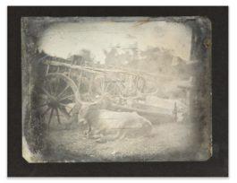 Joseph Philibert Girault De Prangey - 45. Rome; Forum, Boeufs-1842