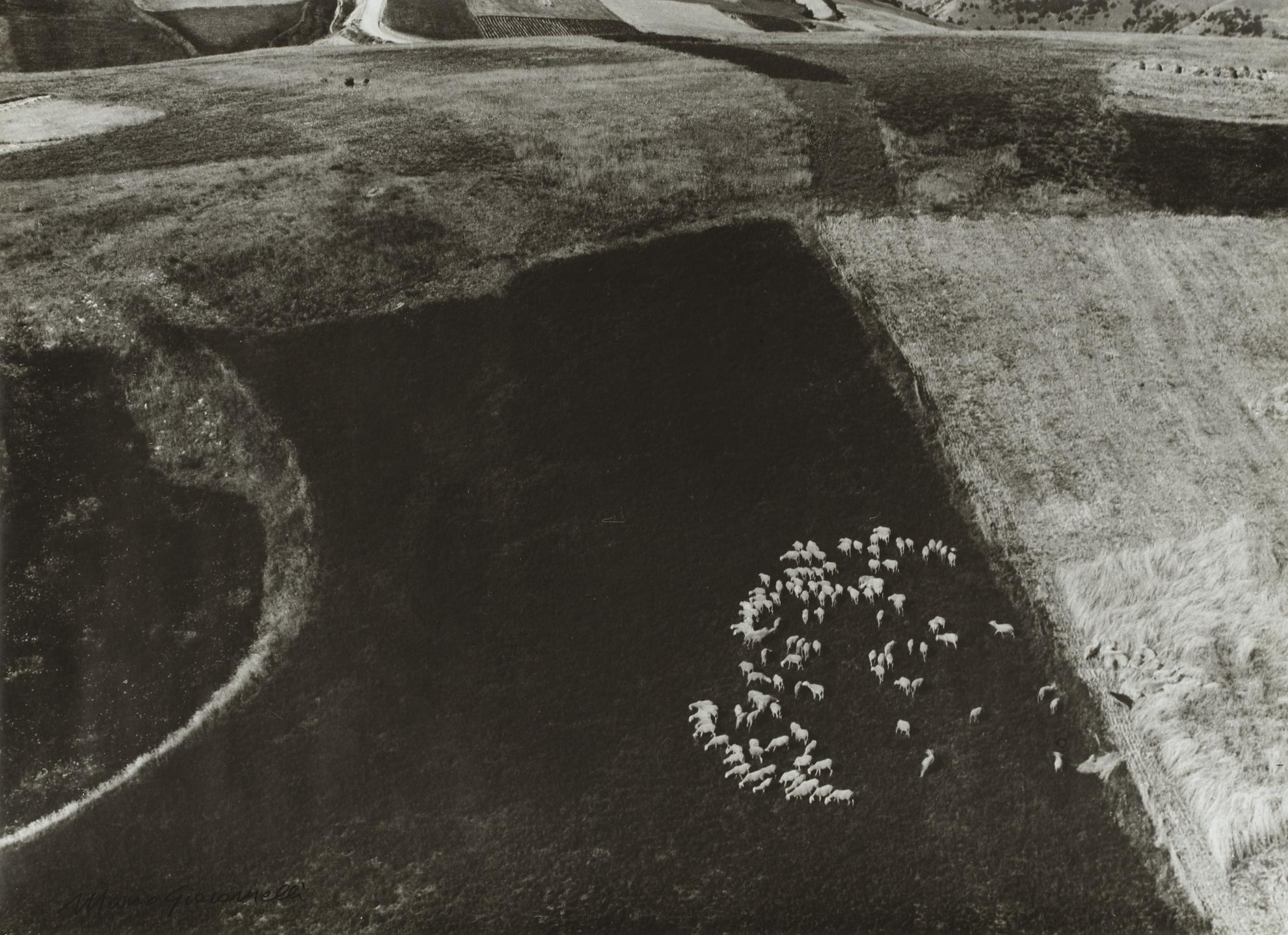 Mario Giacomelli-Presa Di Coscienza Sulla Natura-1980