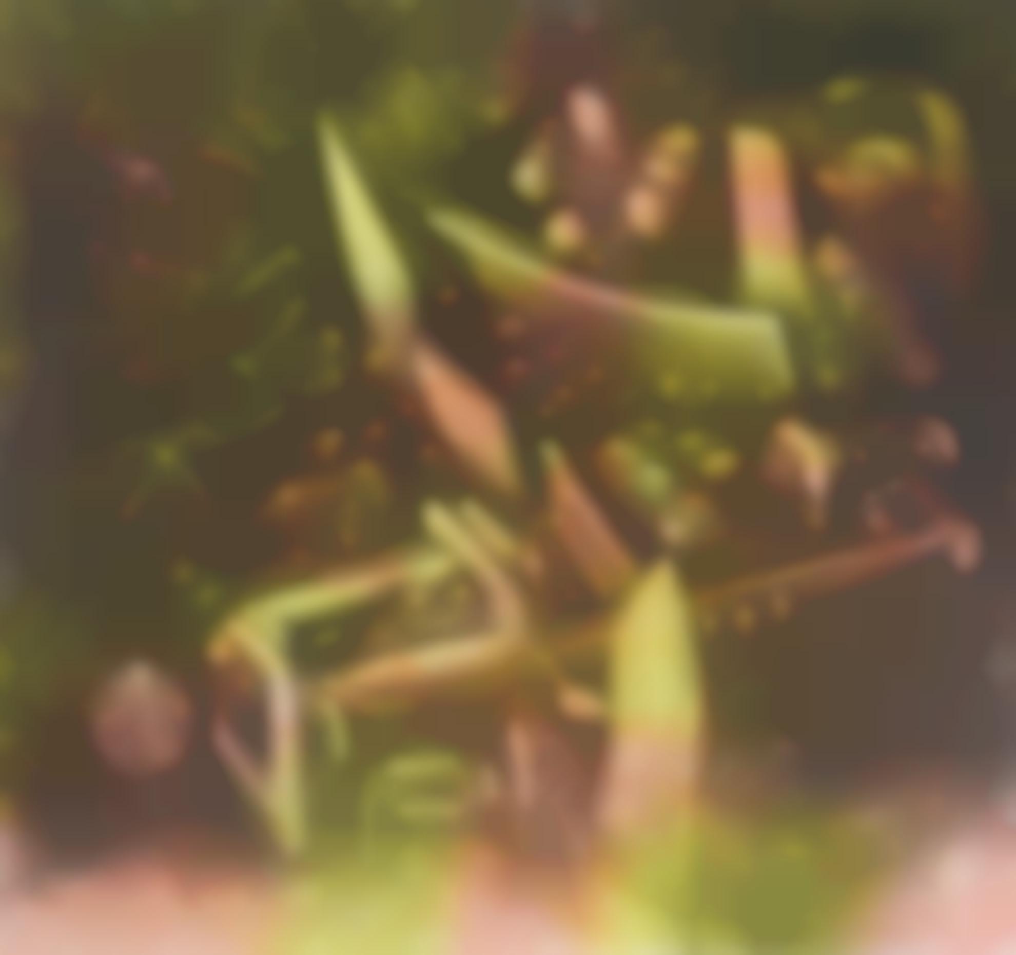 Roberto Matta-Geyser De La Memoire-1970
