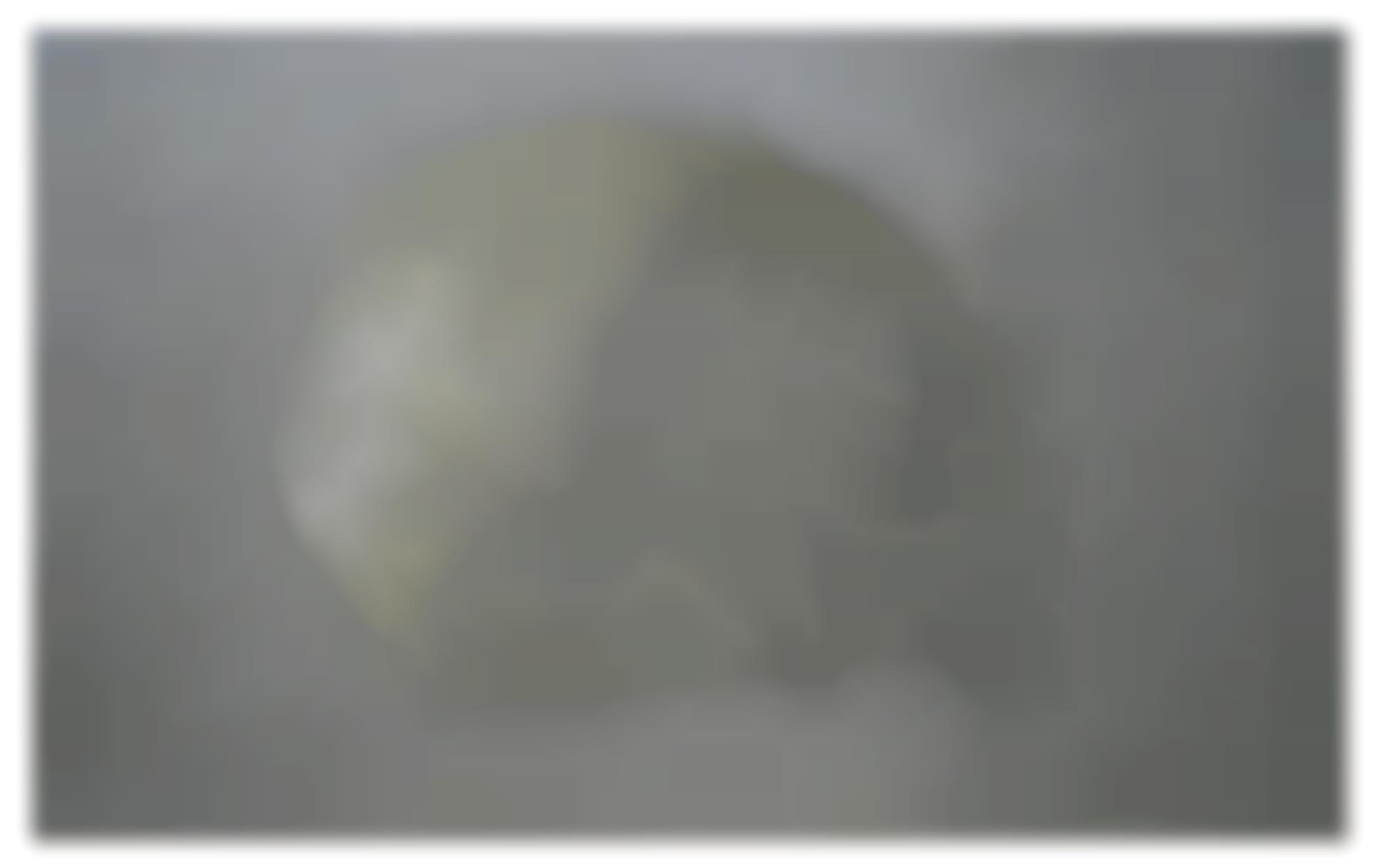 Zhang Huan-Skull No. 11-2007