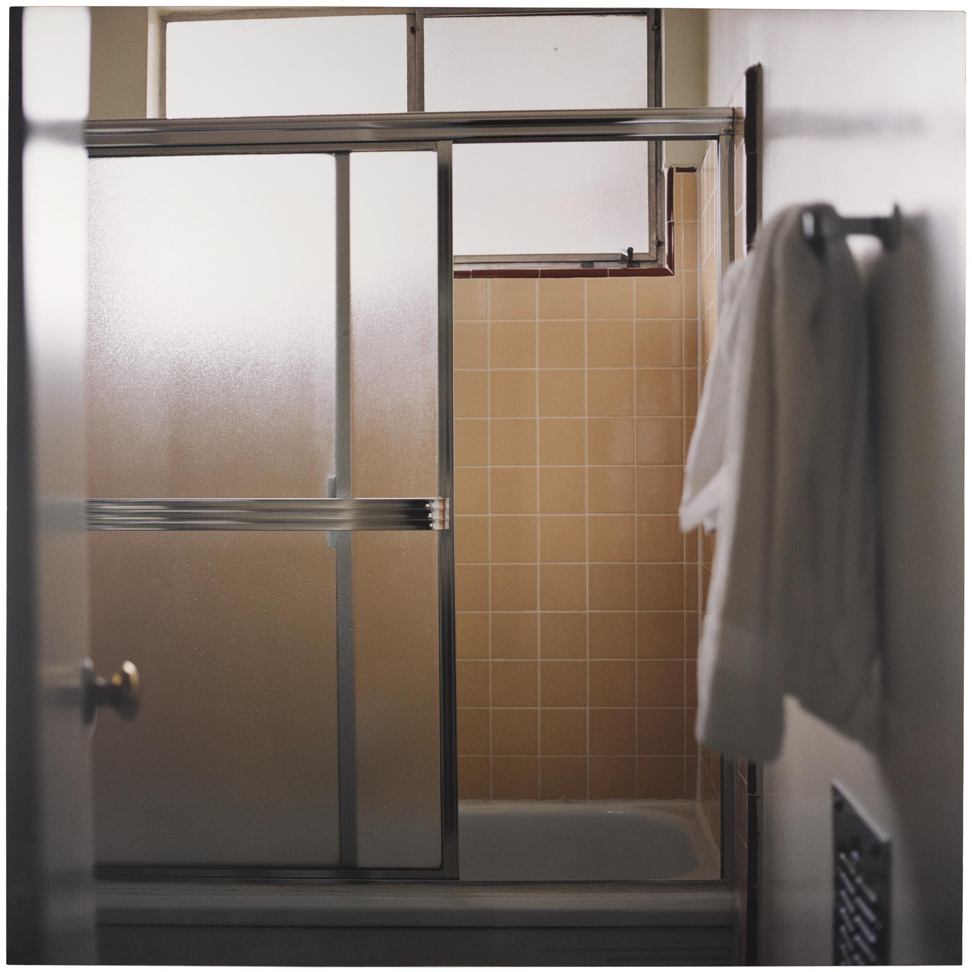 Elisa Sighicelli-Iceland: Bathroom-2001