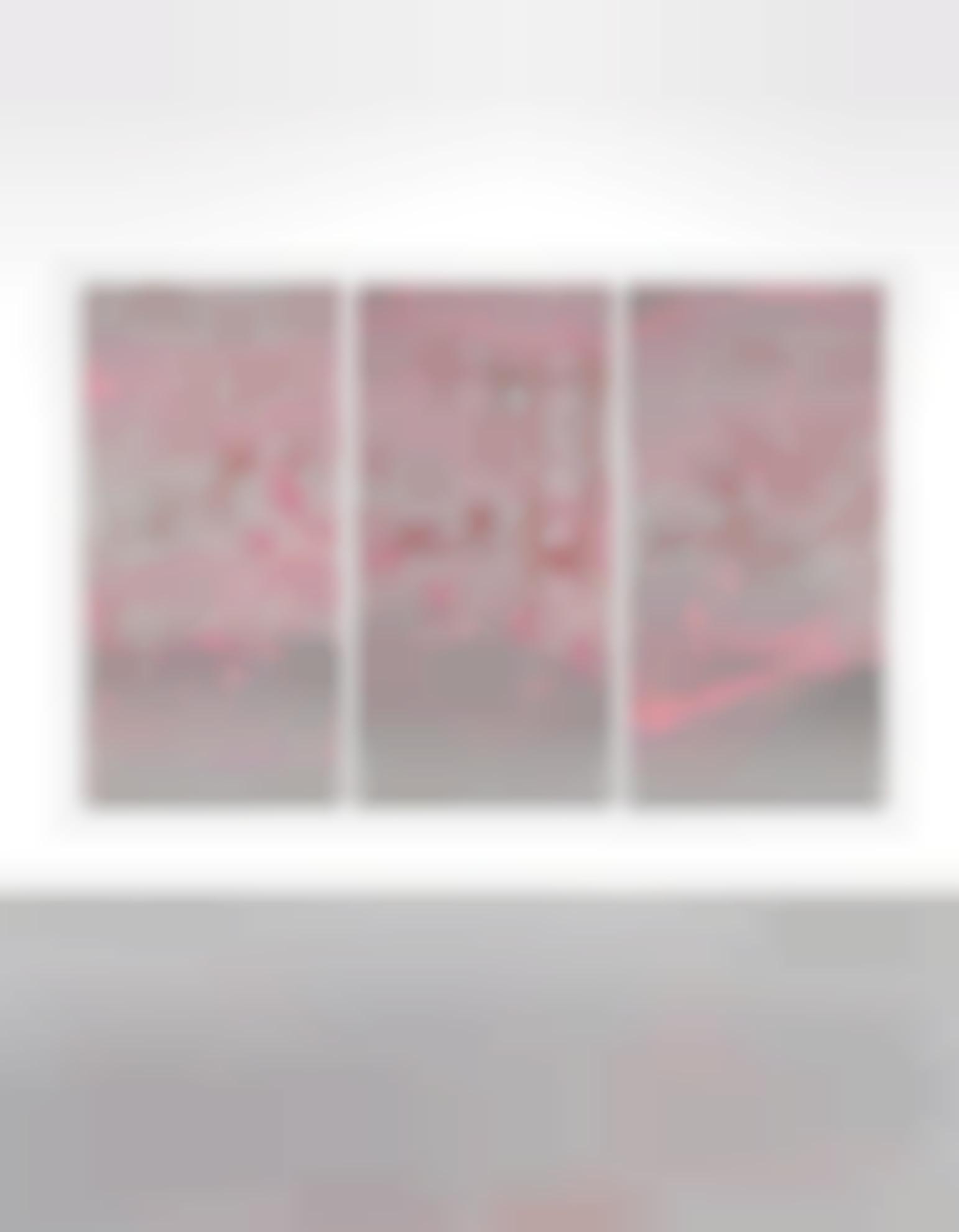 Rob Pruitt-Cherry Blossom Xl-2007