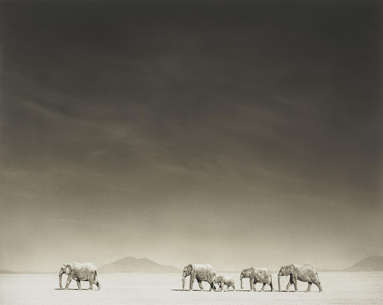 Nick Brandt-Elephants On Bleached Lake Bed, Amboseli-2008