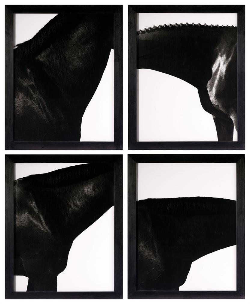 Steven Klein-Neck I, II, III, IV-1995