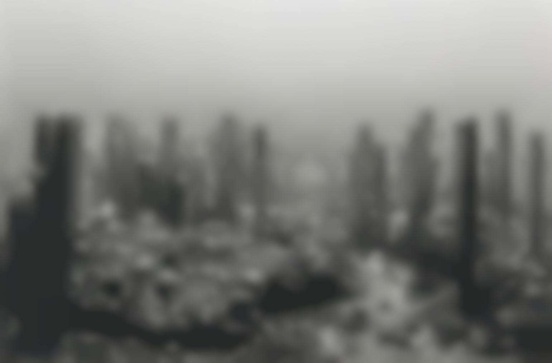 Hiroshi Sugimoto-Permian Period-1992