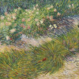Vincent van Gogh-Coin De Jardin Avec Papillons-1887