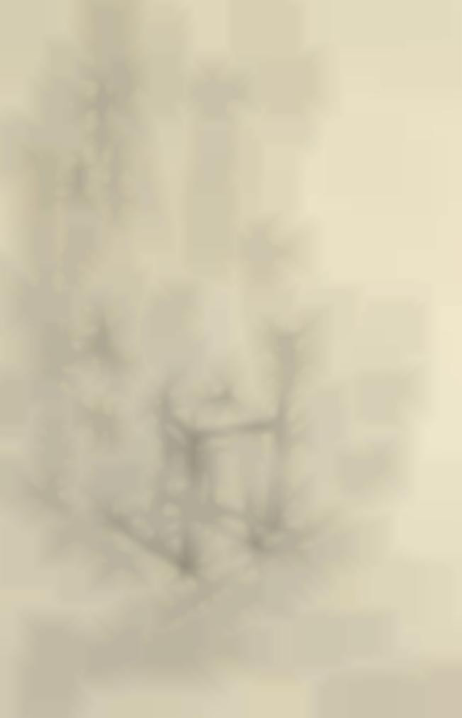 Alberto Giacometti-Vue Datelier-1964